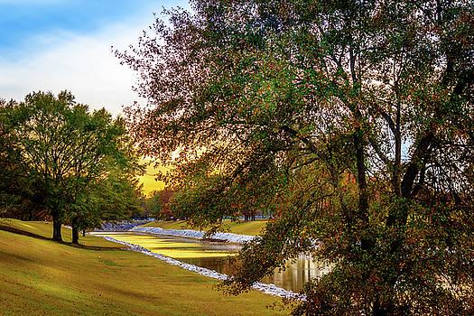 Spillway Levee - Scenic Landscape by Barry Jones