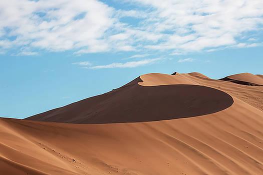 Spine of the Desert by Matt Cohen