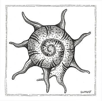 Spiney Nautilus by Stephanie Troxell