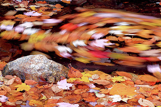 Spinning leaves of Autumn by Brian Pflanz