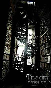 Spiral Staircase by Crystal Rosene