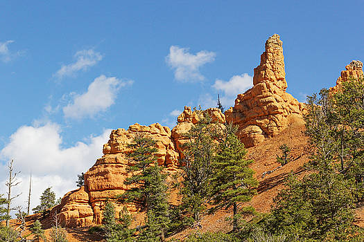 Spires Casto Canyon by Peter J Sucy