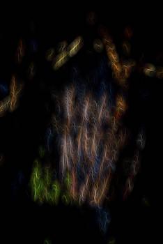 Spirit Garden 1 by William Horden