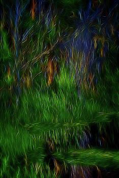 Spirit Garden 2 by William Horden