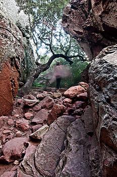 Pedro Cardona Llambias - Spirit of stone path by pedro cardona