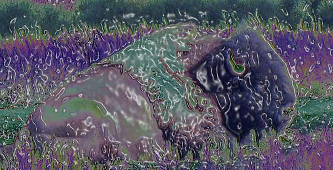 Spirit of the Buffalo  by Juls Adams