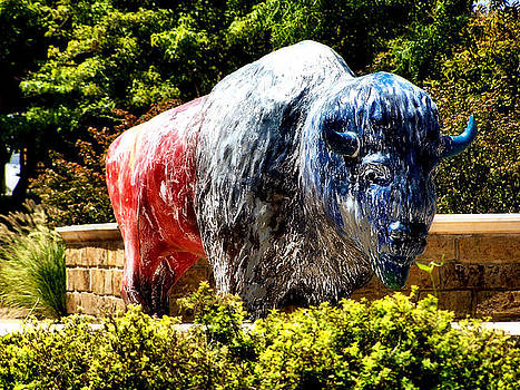 Karen Scovill - Spirit of the Buffalo
