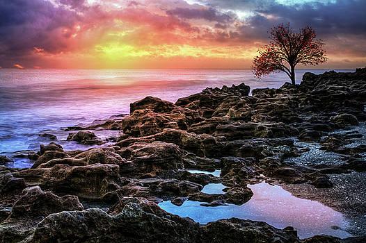 Spiritual Glow at Dawn by Debra and Dave Vanderlaan