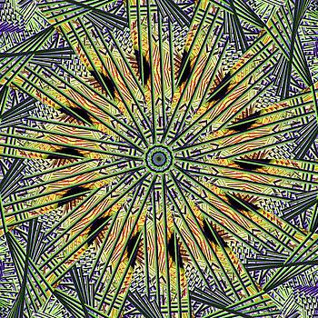 Deborah Benoit - Spiritual Kaleidoscope