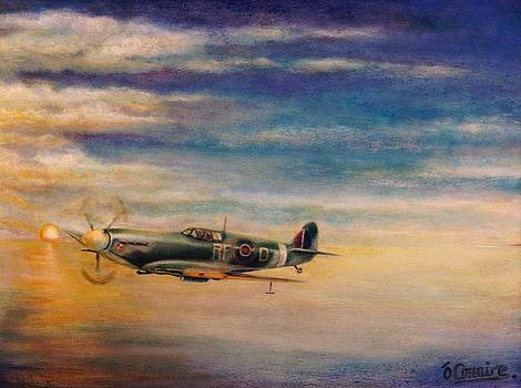 Spitfire in Flight by Liam O Conaire