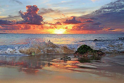 Splash and Color by JJ Preston