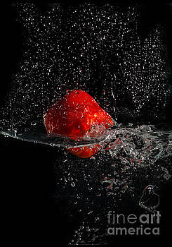 Splash by Barbara Dudzinska