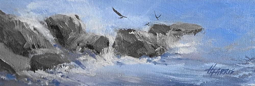 Splash by Helen Harris