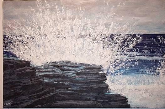Splash by John Prenderville