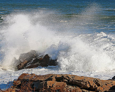 Splash by Michael Oleksiw