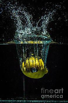 Splash of  Lemon by Marj Dubeau
