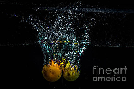 Splash of Orange and Lemon by Marj Dubeau
