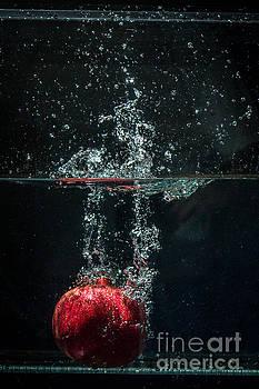 Splash Of Pomegranate  by Marj Dubeau