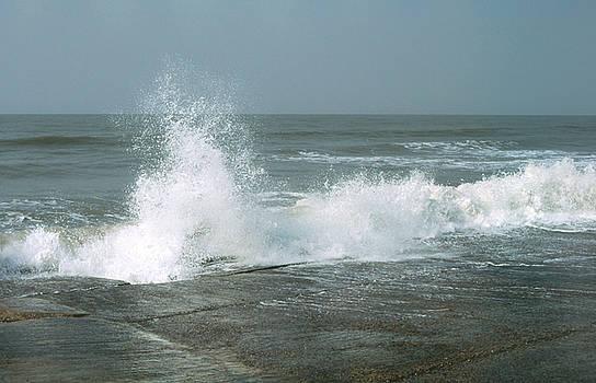 Splash by Subhankar Bhaduri