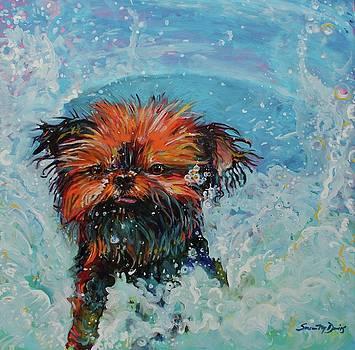 Splash by Susan Davies