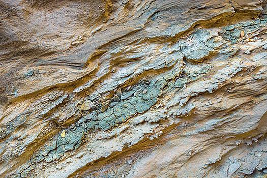 Splashes of Mud by Alexander Kunz