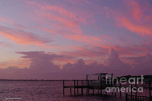 Splendid Florida sunset by Tannis Baldwin