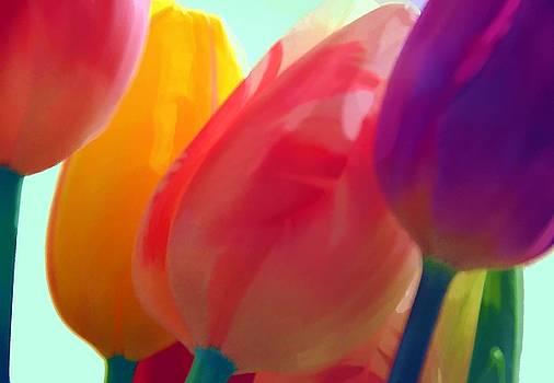 Splendid Tulips by Lorrie Morrison