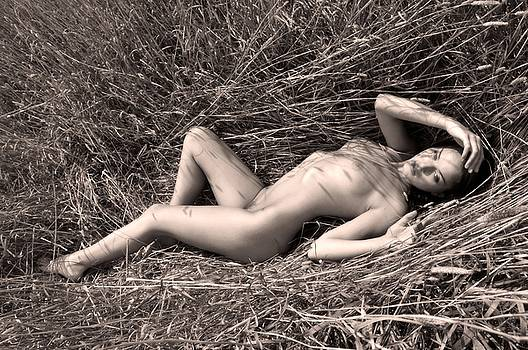 Splendor in the Grass by Curt Johnson