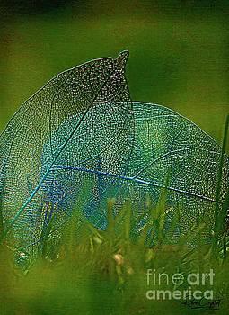 Splendor In The Grass by Rene Crystal