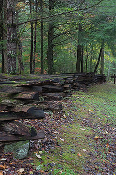 Split rail fence view from side, along an embankment with fall leaves by Natalie Schorr