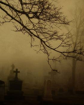 Spooky Graveyard Fog by Gothicrow Images