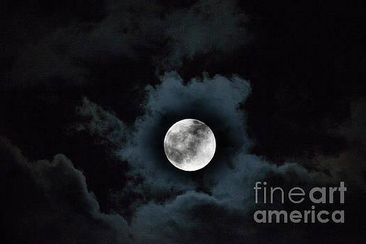 Dale Powell - Spooky Moon