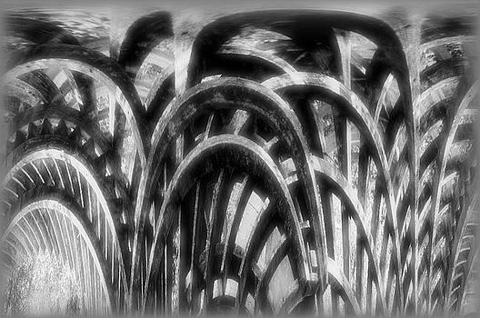 Spooky Swampy Wood Curves by Larry Jost