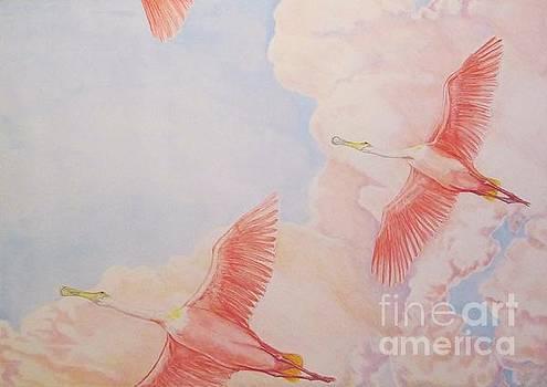 Spoonbill Skies by Sue Bonnar