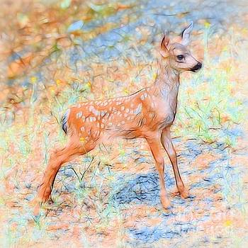 Patrick Witz - Spotted Fawn