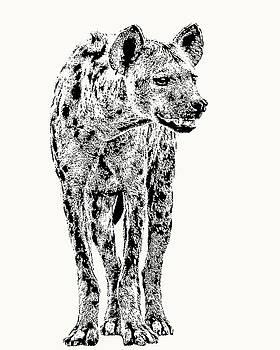 Spotted Hyena Full Figure by Scotch Macaskill