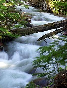 Marty Koch - Sprague Creek Glacier National Park