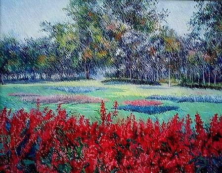 Spring  by Abid Khan