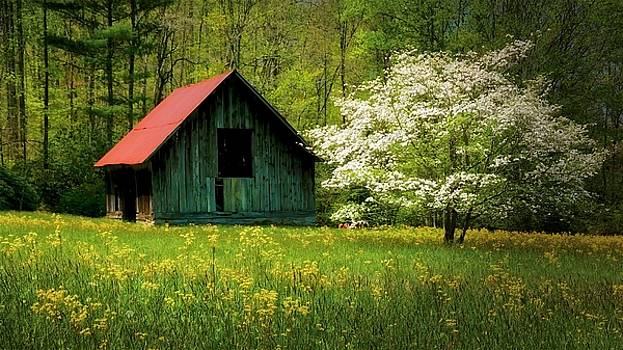 Spring and the Barn by Flying Z Photography by Zayne Diamond
