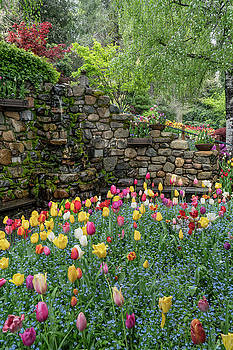 Spring at Crystal Hermitage by Janis Knight