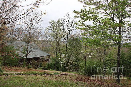 Spring at the Mountain Cabin by Marilyn Carlyle Greiner