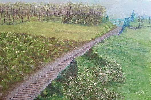 Spring at the Railroad Cut Gettysburg by Joann Renner