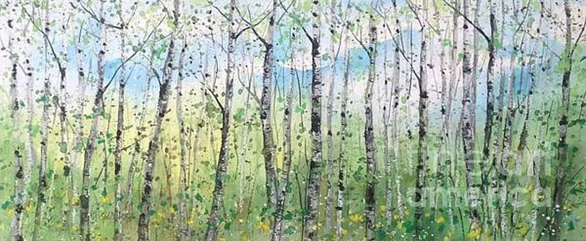 Spring Birch Panorama by Diane Splinter