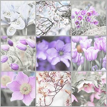 Jenny Rainbow - Spring Bloom Collage. Shabby Chic Collection
