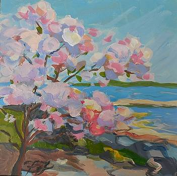 Spring Blooms by Sea by Francine Frank