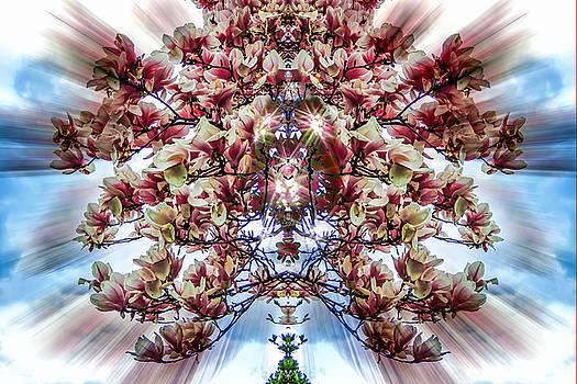 Glenn Feron - Spring Bouquet