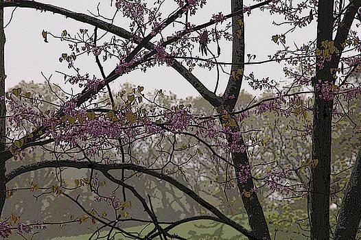 Spring by Burton Floyd