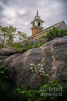 Spring comes to Star Island by Scott Thorp