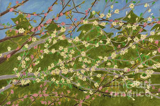 Spring by Cora Eklund