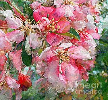 Spring Crab Apple Blossoms 3 by Helene Guertin